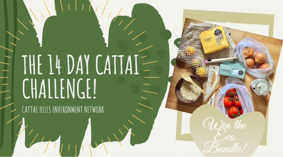 Cattai Challenge! 14 days, 14 actions